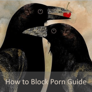 how to block porn